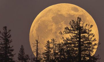 Nov 14, 2016.....A Supermoon Like This One Won't Come Again Until 2034 | Huffington Post