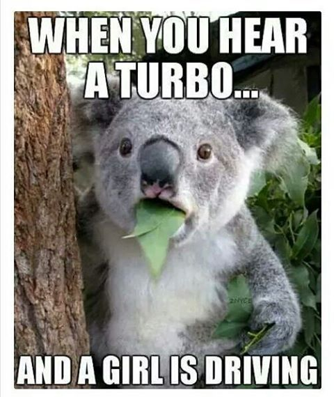 That's right! I love my turbo vw mama car. Busted a couple mustangs ass. 5speed too.