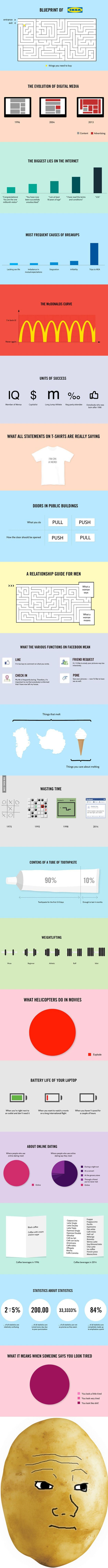 Fun fact info graphic