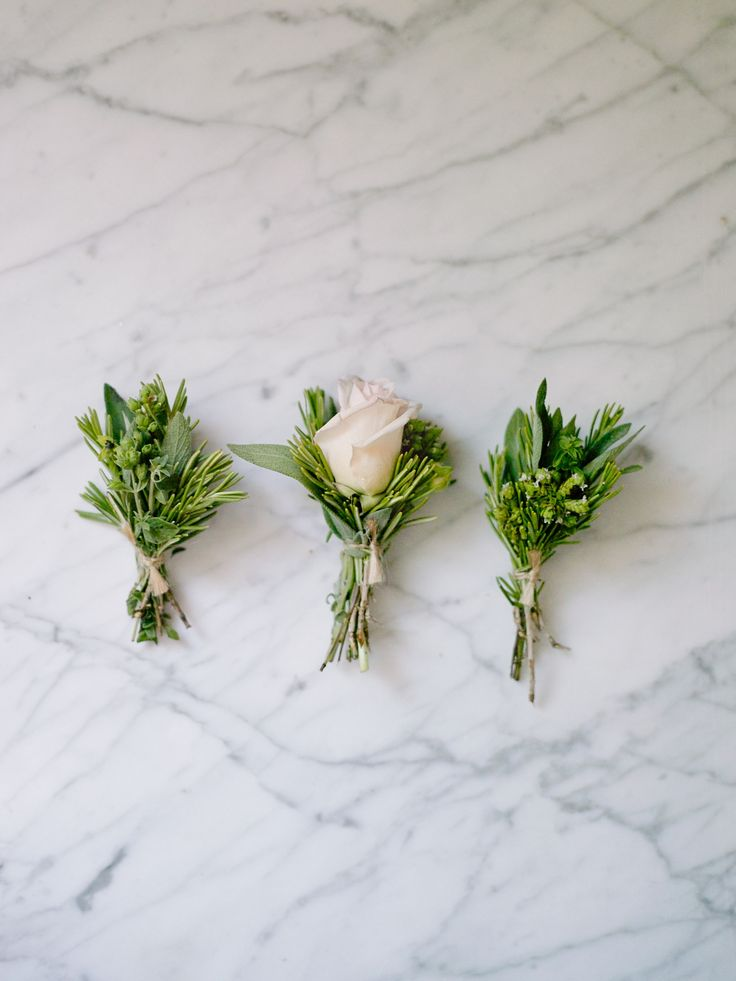 Lush Green Boutonnieres | Aaron Ottis Photography | TheKnot.com