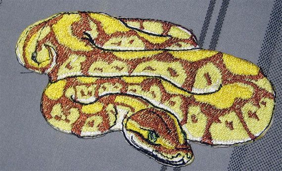 "Awesome Royal Pastel Ball Python  Snake ""Python regius"" Serpent  Pet  Iron on Patch"