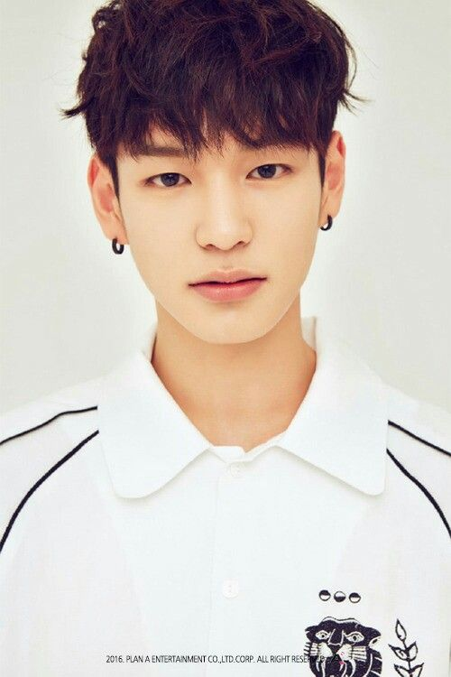 Name: Heo Chan (허찬)  Birthday: December 14th, 1995  Height: 177cm  Weight: 62kg  Main Dancer