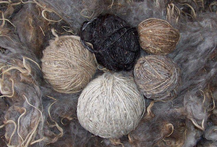 wool: