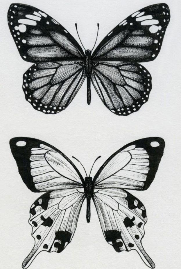 Tatuaje Cartoon Tattoos Butterfly Drawing Bestie Tattoo