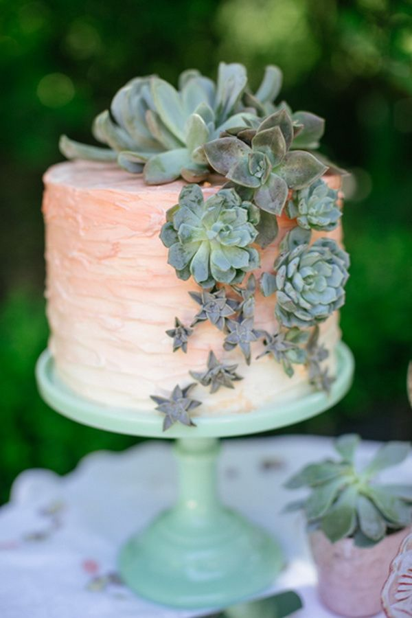 Peach ombre wedding cake with succulent plants