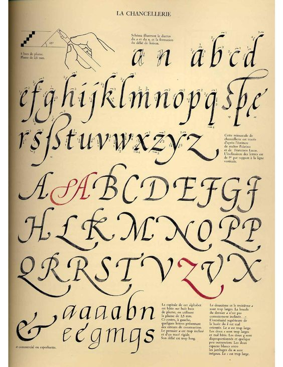 193 Best Images About Calligraphy On Pinterest Behance