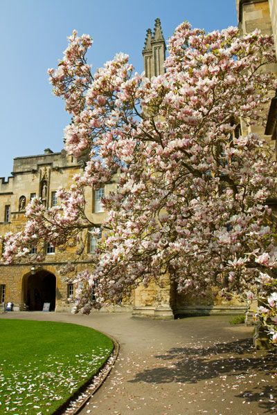 New College,Oxford, England. Founded in 1379 by Wi…