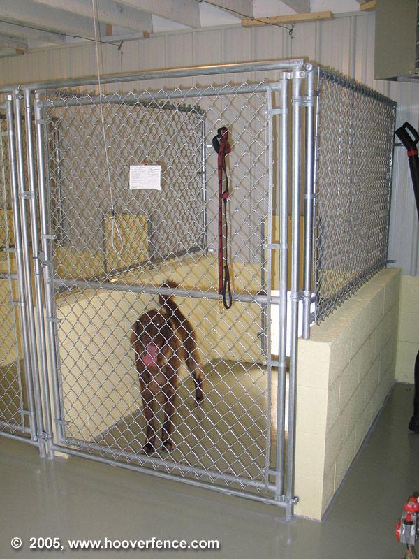 Hfc Dog Kennel Installation Photos Dog Kennel Dog Boarding