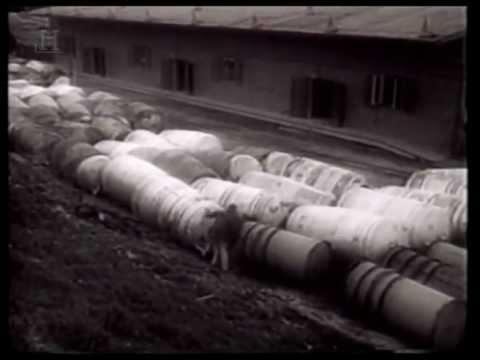 Tajemství Luftwaffe z druhé světové války.cz