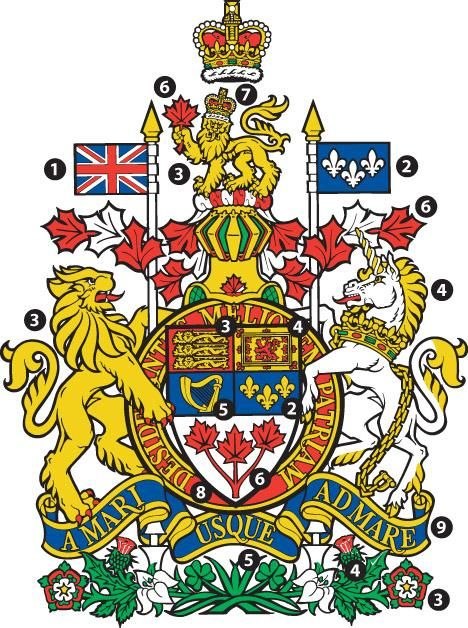 The Canadian Coat of Arms has many symbols that give us clues about Canada's history and what Canadians feel is important. 1 the flag of the United Kingdom 2 the royal flag of France (fleur-de-lis) 3 symbols of England (golden lions, roses) 4 symbols of Scotla...