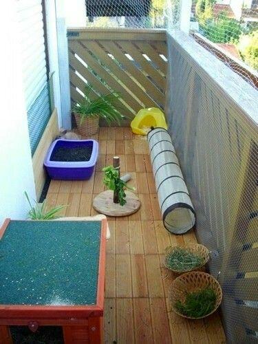 Kaninchen balkon