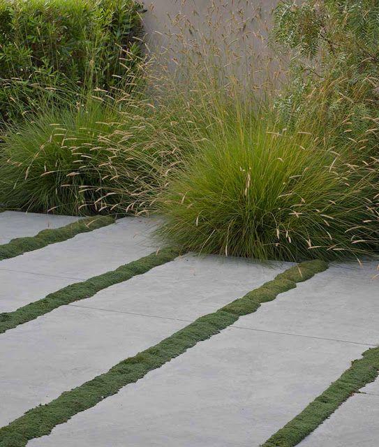 Pasos de jardín con gramíneas