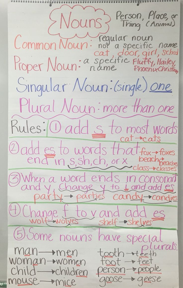 Rules for plural nouns - regular and irregular