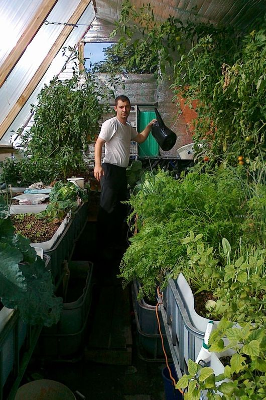 Agrárforradalom egy debreceni hátsó kertben!   www.jövőnk.info