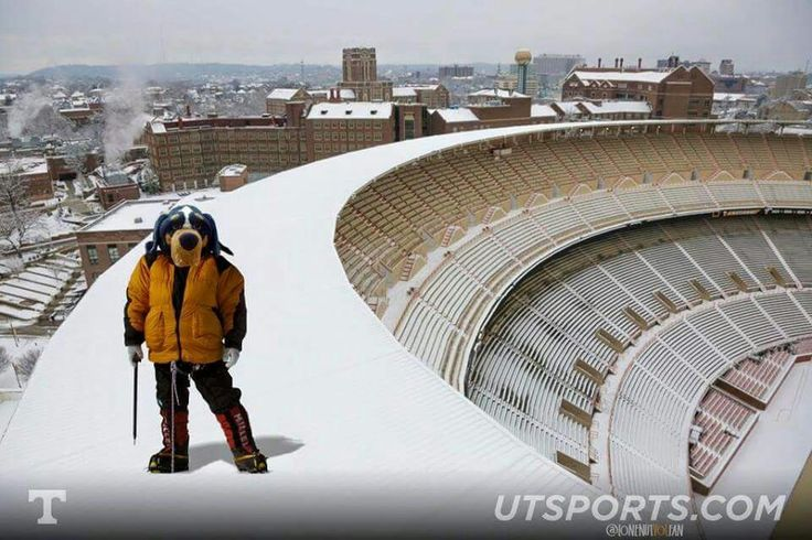 King Of The Hill...Snow On Rocky Top