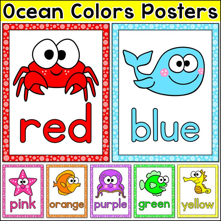 Ocean Theme Colors Posters - Editable Under the Sea Theme Classroom Posters