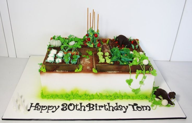 Garden cake recent cake ideas pinterest for Vegetable patch ideas