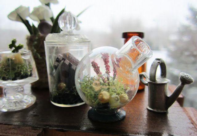 Shades Of Tangerine: Mini Terrarium (DIY)