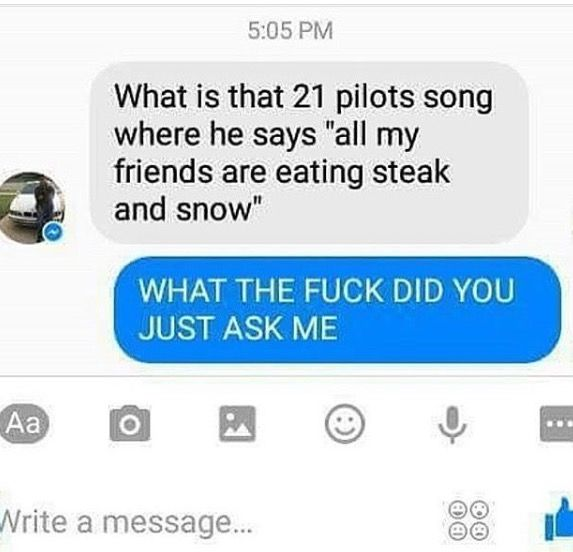 """Okay not even going to address the """"21 pilots"""" thing because I just don't have time for uncultured swines right now but the """"all my friends are eating steak and snow"""" really? reALLY?? What do they think the next lyric is """"wait for them to tell you when it's cold""""??? Or something, like no. Just... Just leave........ I'm sorry, I just get mad at people like this sometimes.... *sigh*"""