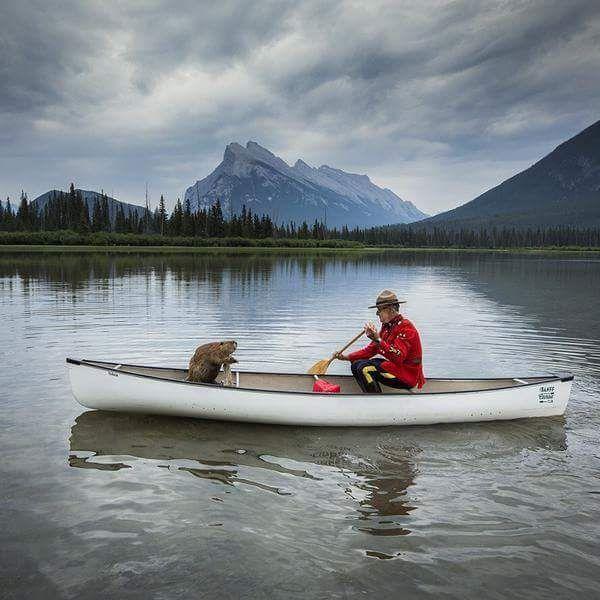 Mountie, beaver and canoe
