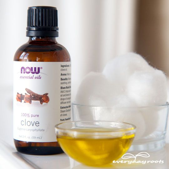 Clove toothache compress, helps with pain and kills the germs as well.  Oil of clove works best but any clove can do in a pinch.  I wonder if soaking some whole cloves in EVOO for a while???  Interesting test.