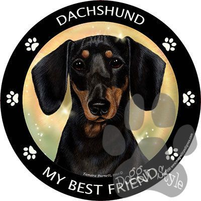Black and Tan Dachshund My Best Friend Dog Breed Magnet http://doggystylegifts.com/products/black-and-tan-dachshund-my-best-friend-dog-breed-magnet