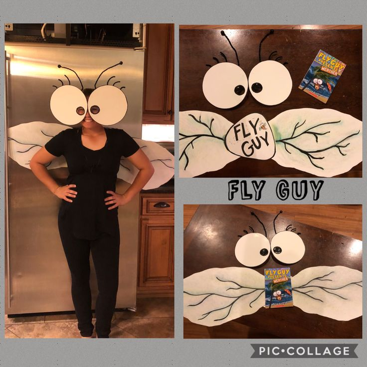 Fly Guy Character Day