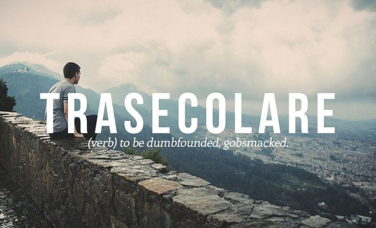 16 Luscious Italian Words And Phrases You Need In Your Life