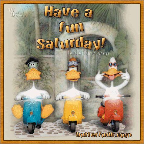 Funny Happy Saturday   Facebook Twitter Pinterest Google+