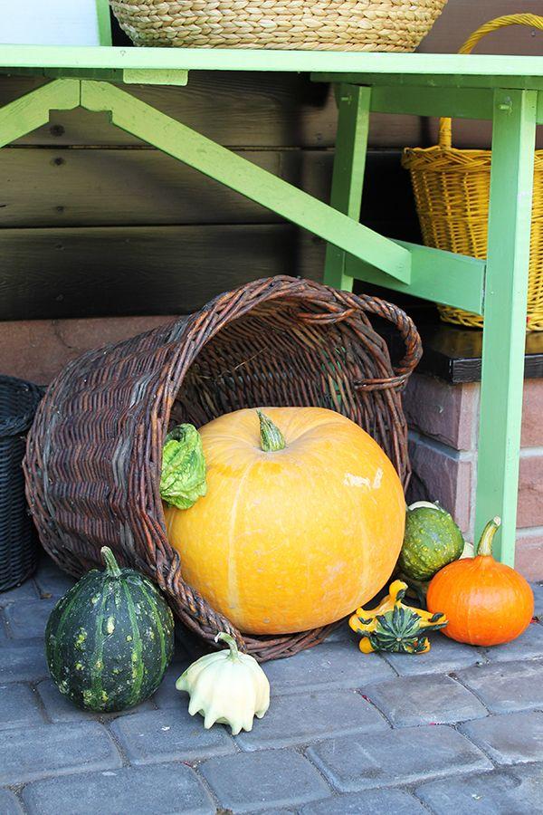 Duży kosz wiklinowy jako jesienna dekoracja ogrodu.