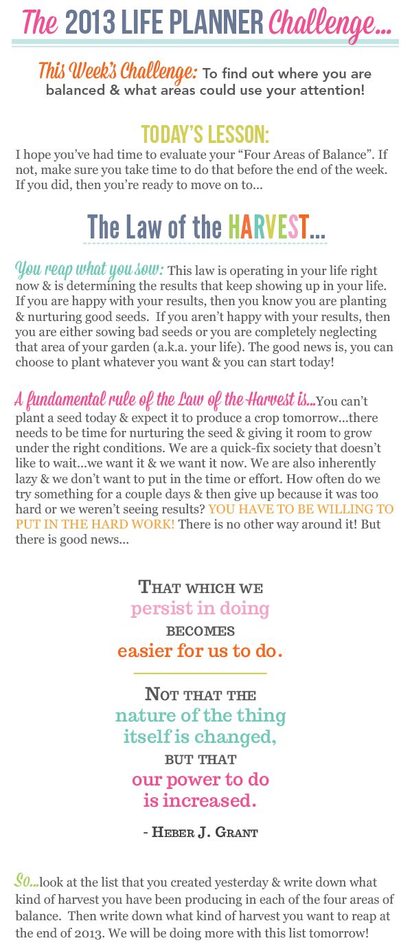 The 2013 Life Planner Challenge - Day 2
