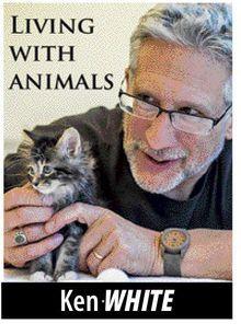 Purebred or mutt? - Peninsula Humane Society & SPCA