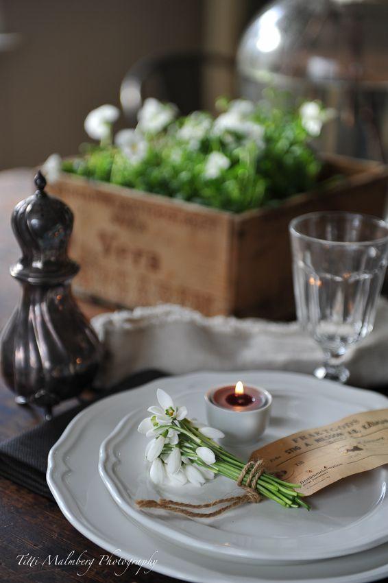 HWIT BLOGG: FLOWERS by titti & ingrid - Vita blommor på bordet