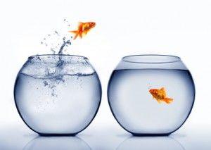 Le manager de demain est un coordinateur !  Je lisais hier dans un article du Monde que Thomas Frey, futurologue, pense que l'avenir appartient aux « solopreneurs« , c'est-à-dire des entrepreneurs à leur compte, qui iront de projet en projet.