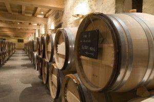 Le chai du château Canon la Gaffelière vous attend lors d'une visite. Pour cela il vous suffit de réserver sur Wine Tour Booking  http://bordeaux.winetourbooking.com/fr/propriete/chateau-canon-la-gaffeliere-14.html#horizontalTab1