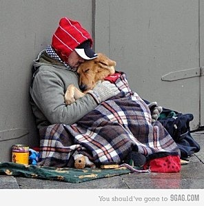 AWWW. NOW THIS IS WHAT A HEALTHY RELATIONSHIP WITH A DOG IS. Precious. Without each other, they would be lost.