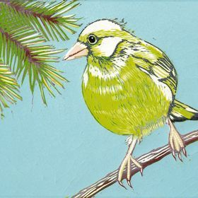 Greenfinch, Blue Sky by Marian Carter