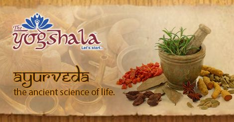 Namo Gange Namaskar!! AYURVEDA-Ayurveda is an ancient system of Indian medicine. Did you know, it was originated go back nearly 5000 BCE. In India, #Ayurveda is known as mother of all therapies and a system of life-discipline. Read more about Ayurveda by clicking http://www.theyogshala.com/ayurveda.php #TheYogshala #AncientSystem #YogaTherapy #MotherOfTherapies #AyurvedaTherapy #SystemOfLife