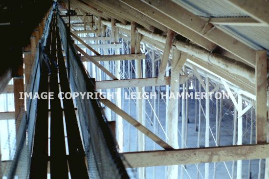 The top conveyor belt in the Murtoa Stick Shed