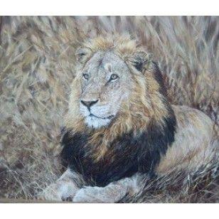 Lion - Mvungi Lusingu