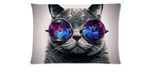 Resultado de imagen para gato con gafas hipster