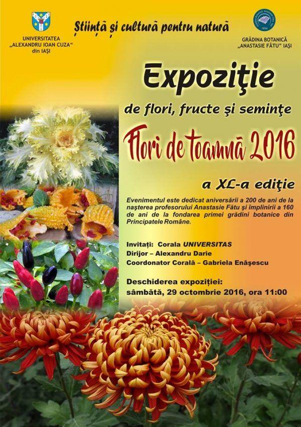 flori-de-toamna-2016