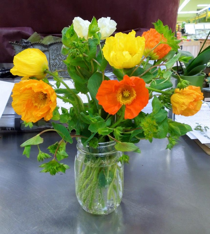 Icelandic poppies! Great for a spring time feel!