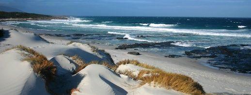 Port Arthur to Freycinet Self Drive Itinerary Tasmania Friendly Beaches