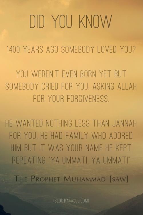 The Beloved Prophet Muhammad (SAW)  (blog.hafajul.com)