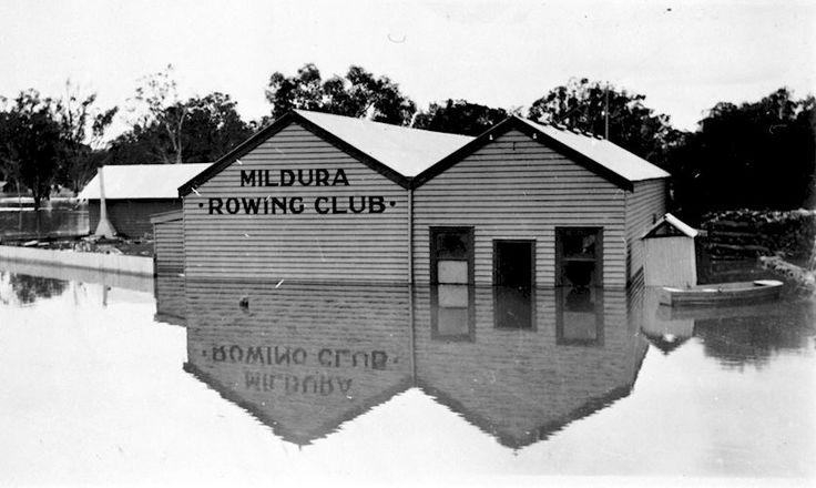 Mildura Rowers in flood c1931