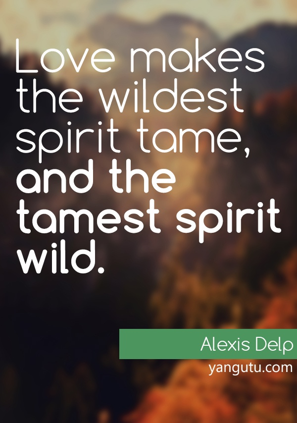 Wild Love Quotes: Best 25+ Opposites Attract Quotes Ideas On Pinterest