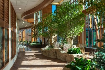 Avera Cancer Center - promoting nature in healing environments