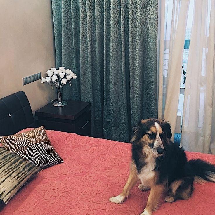 Дизайн #спальни @julia_egunova понравился всем, даже собаке Василисе :) #шторы из #ткани Method коллекция Sicily #galleria_arben #fabric