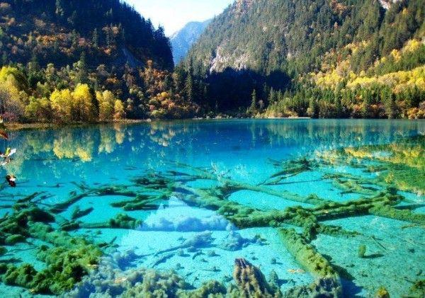 Les plus beaux lacs du Monde - Parc national Jiuzhaigo - Chine